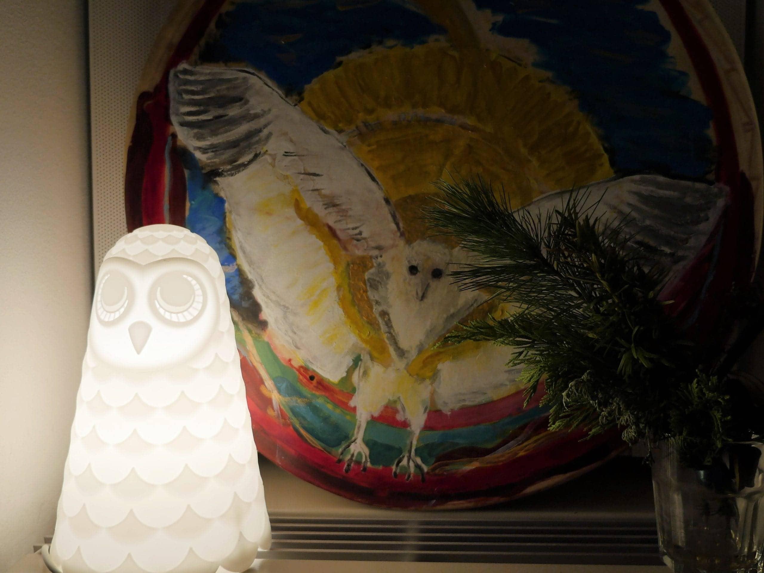 Spirit van Uil en de (nep)sjamaan
