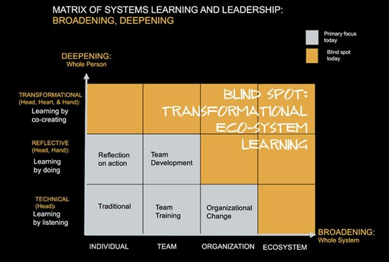 Matrix van systeemleren en leiderschap
