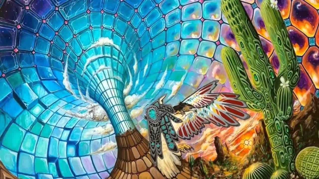 Huachuma kaktusplant